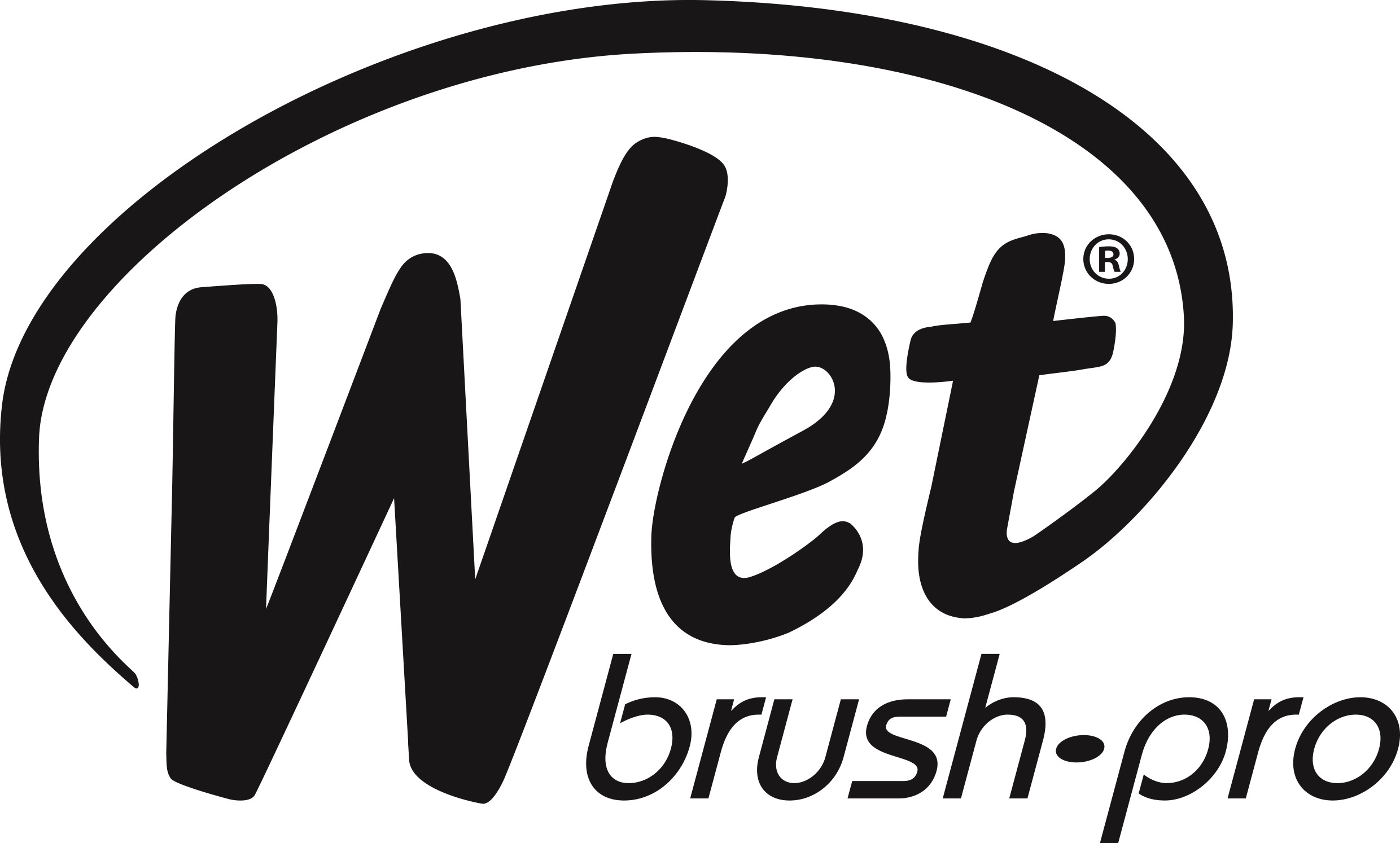 Wet brush-pro
